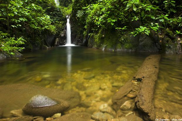 Río y cascada en la Reserva Itapoa. Esmeraldas, Ecuador. River and waterfall in Itapoa Reserve. Esmeraldas, Ecuador