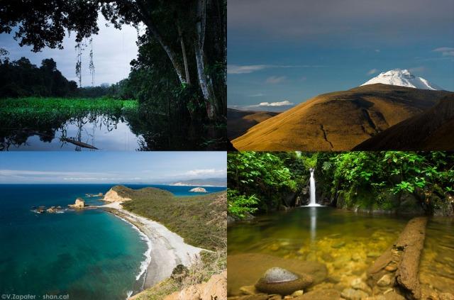 4 de las 11 ecorregiones de Ecuador. 4 from 11 ecoregions in Equador