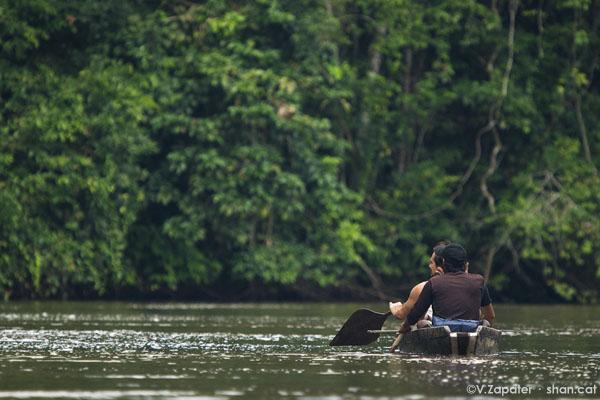 Remando en el río Yasuní. Paddling on Yasuni river